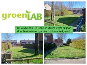 collage Fruitgaard De Capel